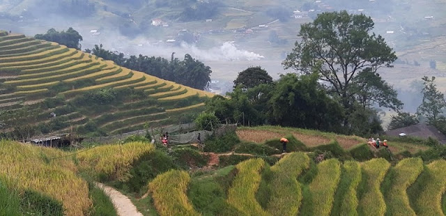 The Best Trekking Packages In Vietnam