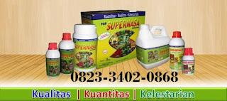 AGEN NASA DI Sawang Aceh Selatan - TELF 082334020868
