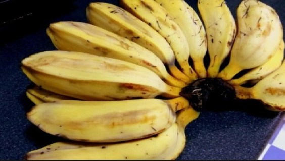 Cardava Banana The Highest Nutrients Among Other Banana Fruits