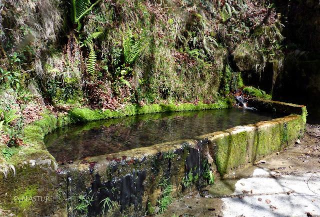 Fuente cerca del Corralín