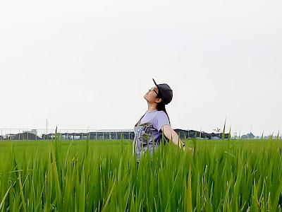 郑明析, 稻田, 适耕庄, 仰望天空