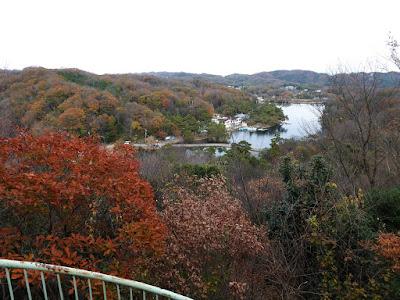 くろんど池の全景 野鳥の森『展望台』からの眺め