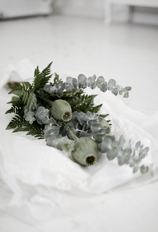 vallmokapslar, blommor, grönska