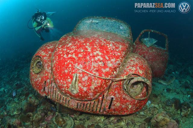 Jun V Lao, Underwater Photography, Scubadiving