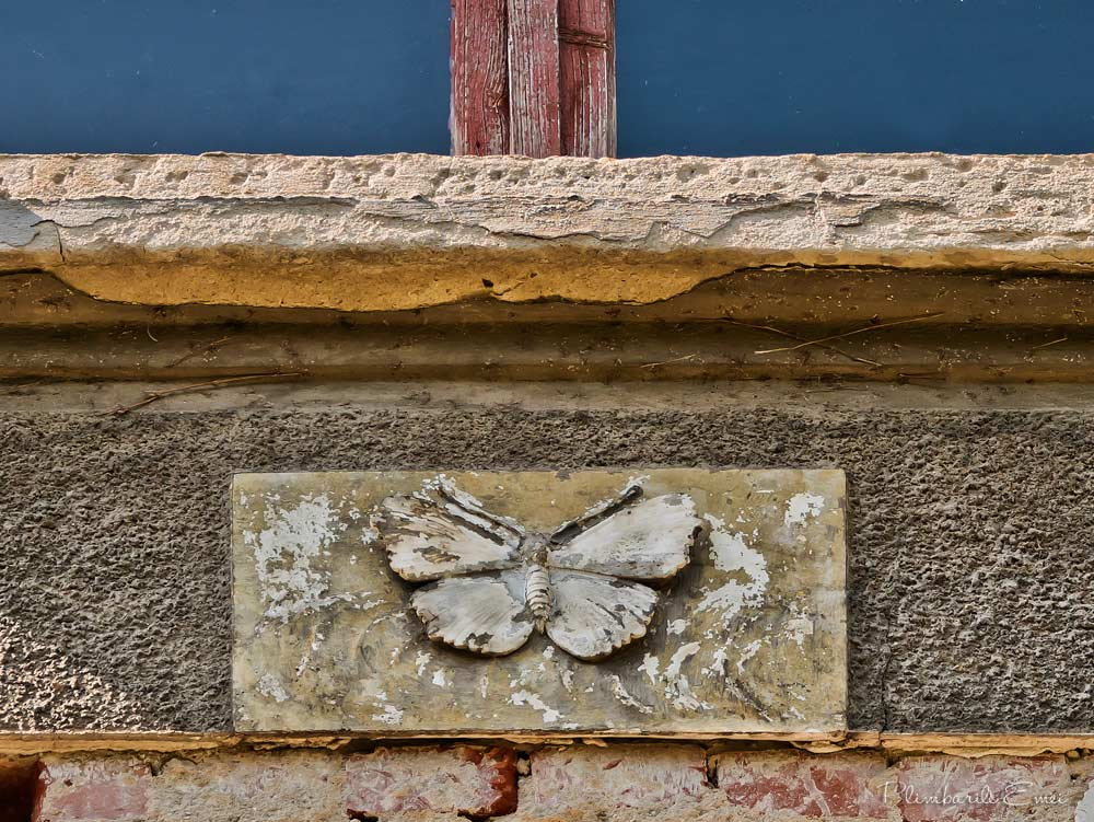 Domenii Bucuresti detaliu arhitectura fluture decorativ