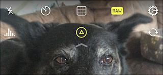 Cara Mengambil Gambar / Foto RAW di iPhone & iPad
