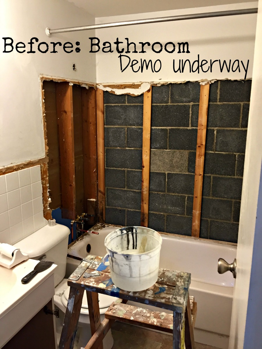 Before: bathroom demo underway