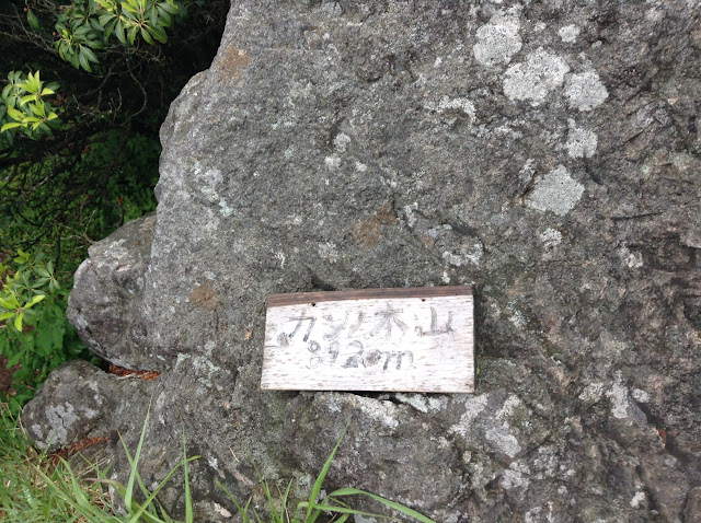 トレイルランニングコース カンノ木山山頂