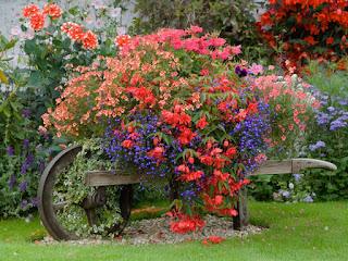 вазоны для цветов, как сделать вазон для цветов, бетонные вазоны для цветов