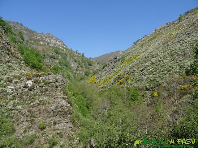 Valle del Arroyo de la Braña subiendo a la Braña la Folgueirosa