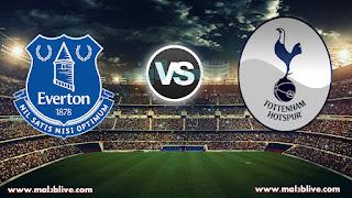 مشاهدة مباراة توتنهام وايفرتون Tottenham-hotspur vs everton-fc بث مباشر بتاريخ 13-01-2018 الدوري الانجليزي