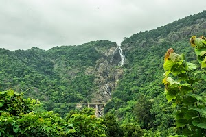 Dudhsagar Water Falls, not much water in last week of June