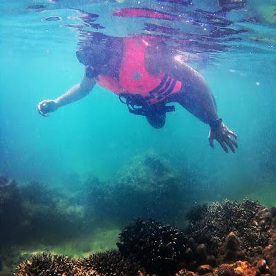 snorkeling pulau panjang