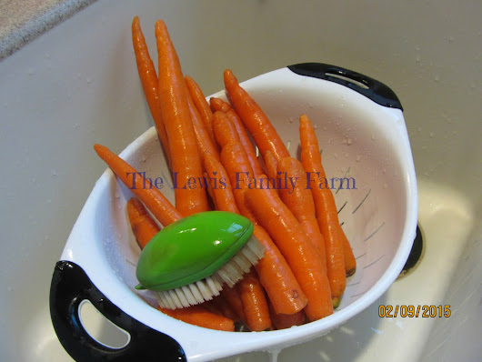 Carrot French Fries
