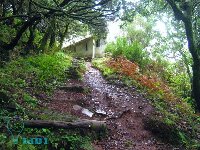 levada do risco pr 6.1 - 02 - idd1