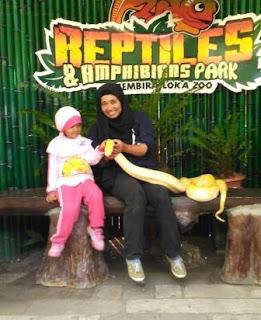 Reptil-GL-Zoo-Jogja