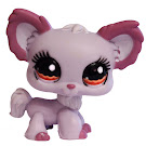 Littlest Pet Shop Multi Pack Chihuahua (#1138) Pet
