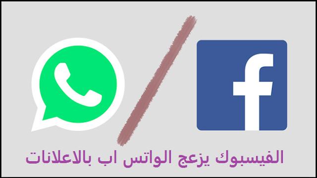 يؤكد فيس بوك أن تطبيق WhatsApp سيحظى بالإعلانات فى عام 2019: إنه سيغزوك بالإعلانات