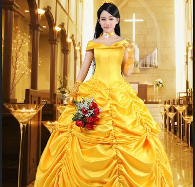 Gaun Princess Belle