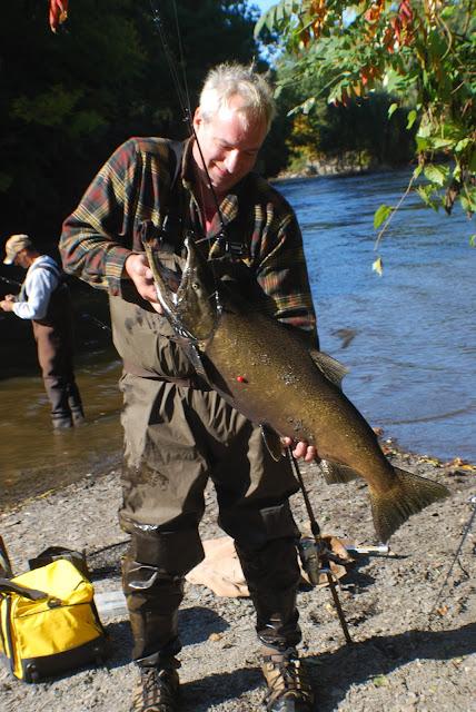 Litton 39 s fishing lines pulaski salmon surge salmon river for Pulaski salmon fishing