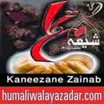 http://audionohay.blogspot.com/2014/10/anjuman-kaneezane-zainab-nohay-2015.html