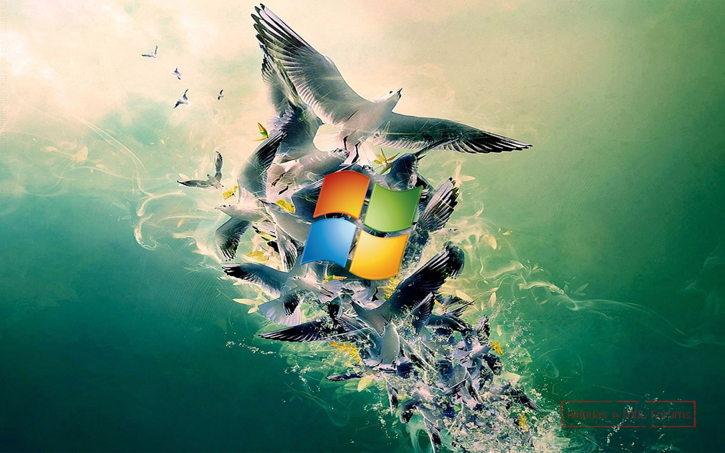 Free High-Definition Wallpapers: Windows 8 Wallpapers Free Download 1080p