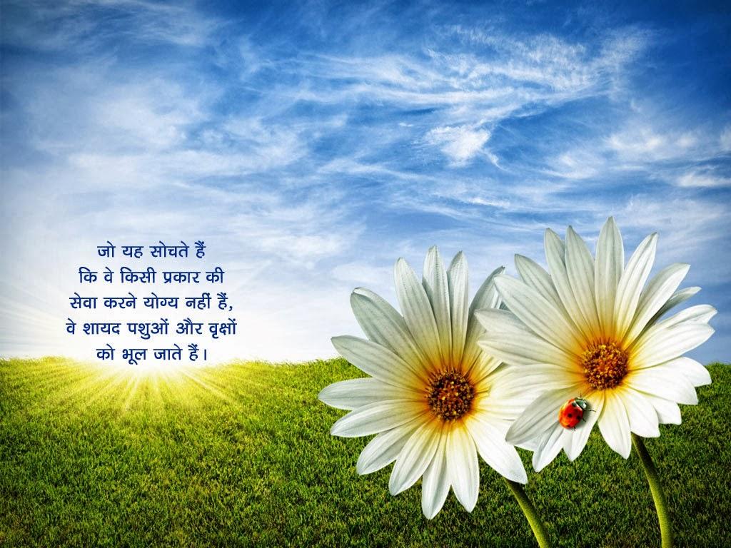 Hindi Anmol Vachan Hd Wallpapers