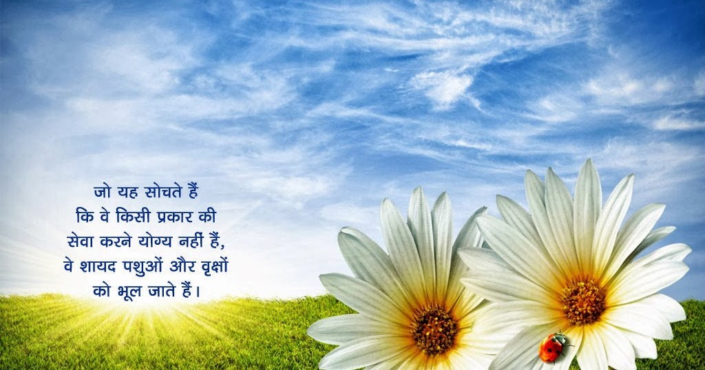 Punjabi Couple Wallpaper With Quotes Hindi Anmol Vachan Hd Wallpapers Hd Wallpaper Pictures