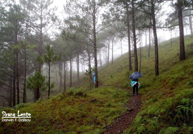 Mt. Ulap trails 2020