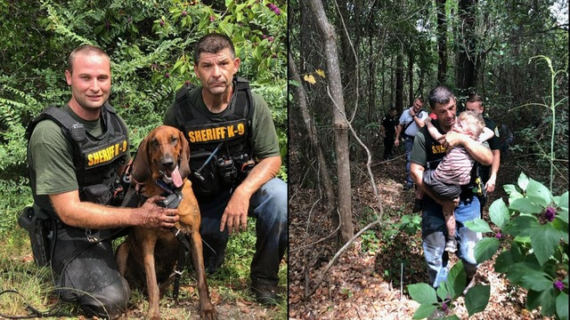 K-9 Found Missing Three-Year-Old Florida Boy With Autism In Less Than Half An Hour