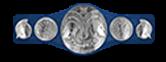 silver wwe tag team title penny belt trojan championship