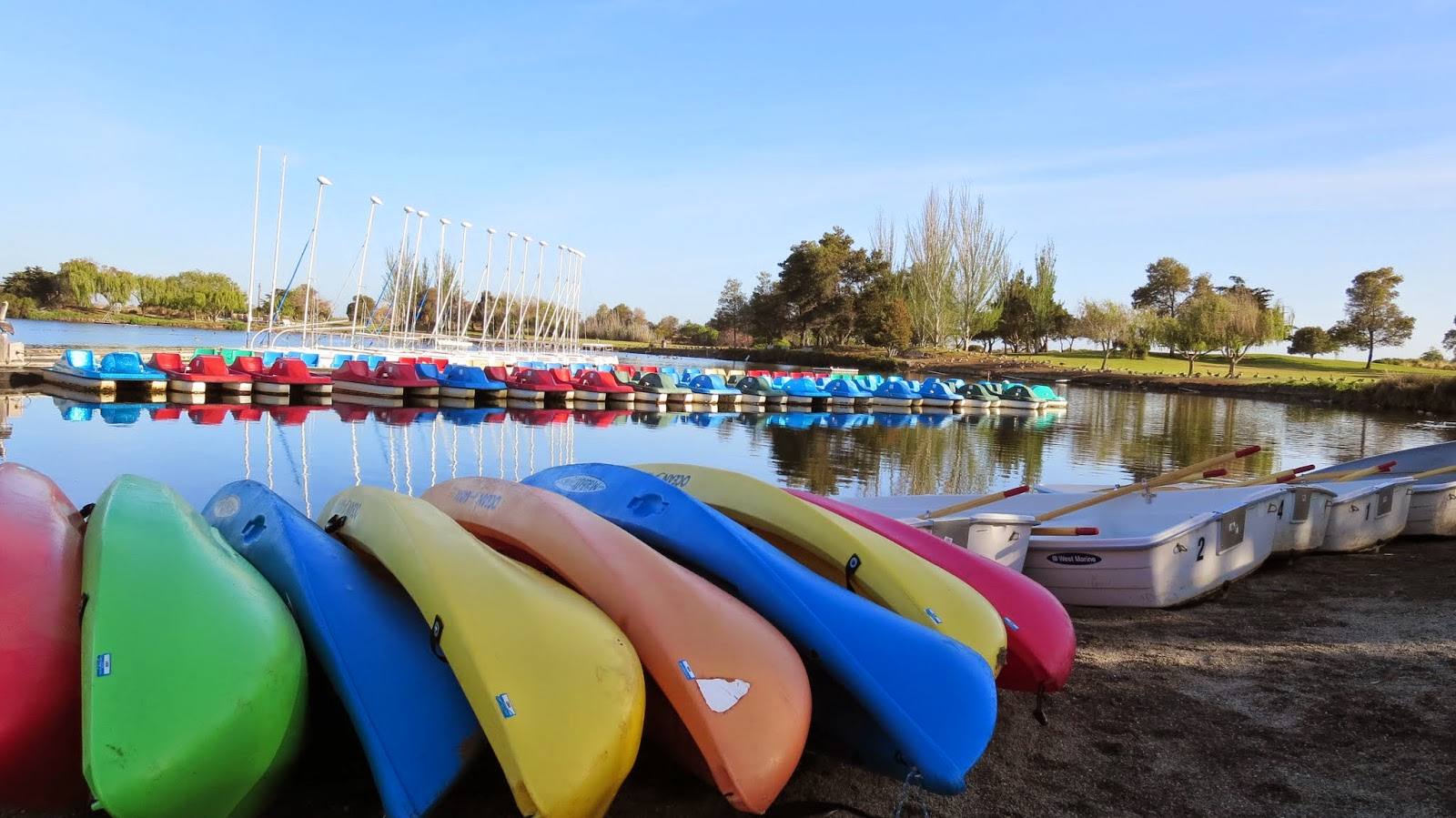 kayaks in Shoreline Park in Mountain View California