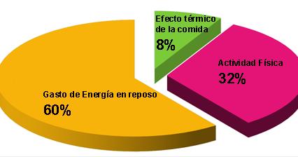 Alimentación y Nutrición: Necesidades Energéticas para el..