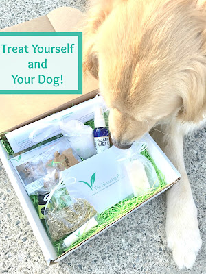 health and wellness subscription box for dogs and their owner
