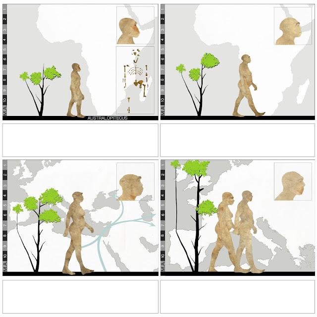 Australopithecus ,Ergaster, Erectus,migraciones