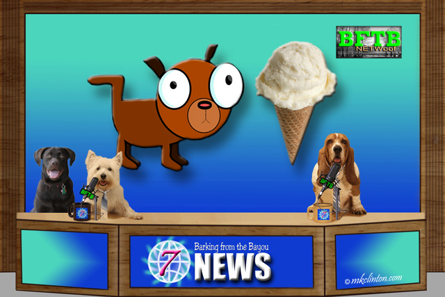 BFTB NETWoof Dog News with dog and ice cream in background