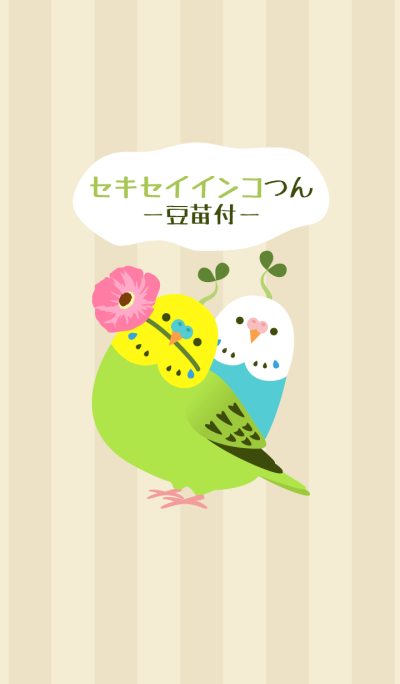 Budgerigars and pea sprout