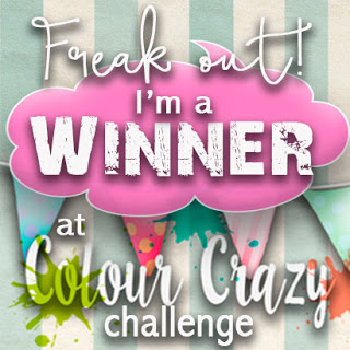 Won Colour Crazy Craft Challenge