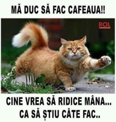 Ma duc sa fac cafeaua