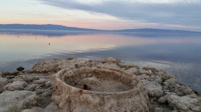 Salton Sea Shore
