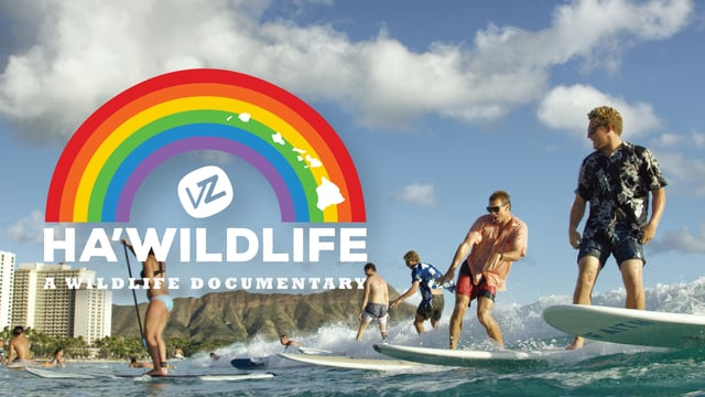 VonZipper Ha WildLife - A WildLife Documentary