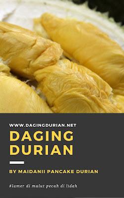 beli-disini-daging-durian-medan-yang-tiada-duanya-di-nias-utara