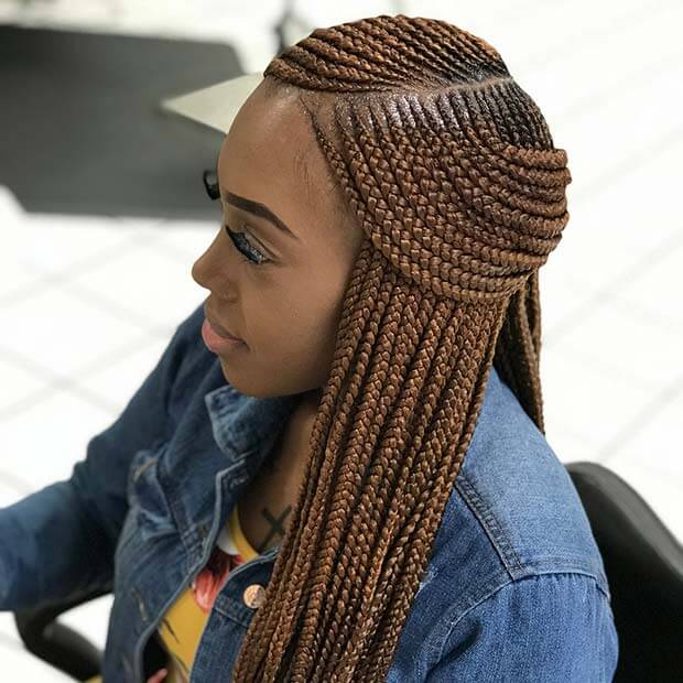 23 Fulani Black Braided Hairstyles With Color For