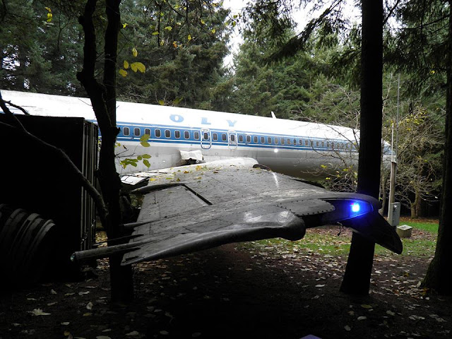 Oregon man recycles plane as his home in the forest