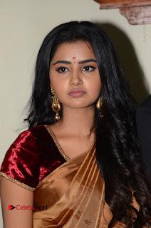 Actress Anupama Parameswaran Stills in Silk Saree with Shatamanam Bhavati Team at Sandhya Theater  0024.JPG