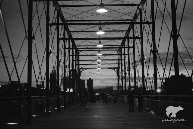 Hays Street Bridge. San Antonio, TX.