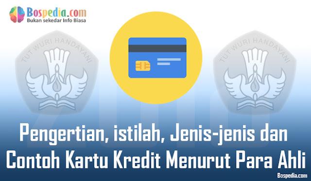 Pengertian, istilah, Jenis-jenis dan Contoh Kartu Kredit Menurut Para Ahli