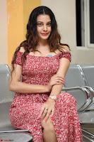 Diksha Panth in a Deep neck Short dress at Maya Mall pre release function ~ Celebrities Exclusive Galleries 081.JPG