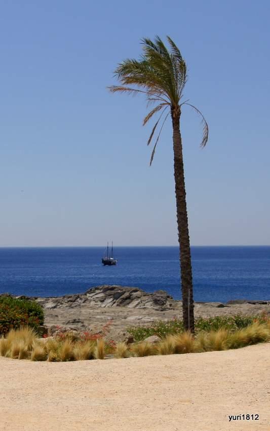 Средиземное море, Греция