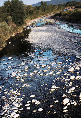 El río Ara